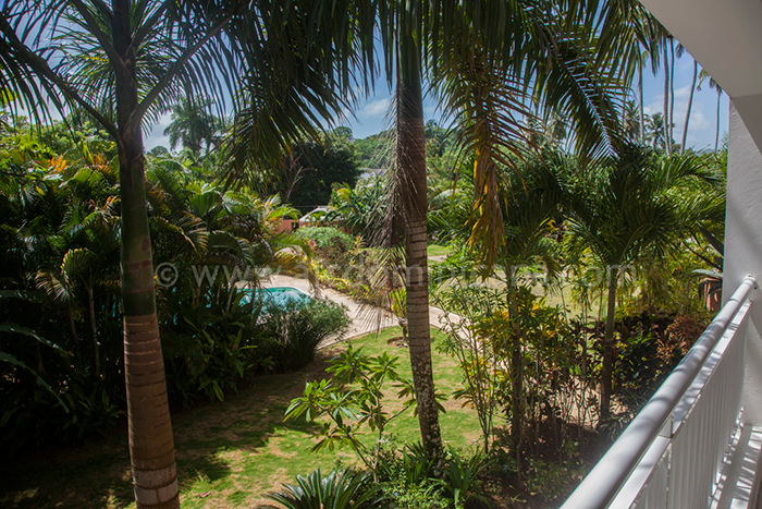 caoba regis vente appartement las terrenas 07