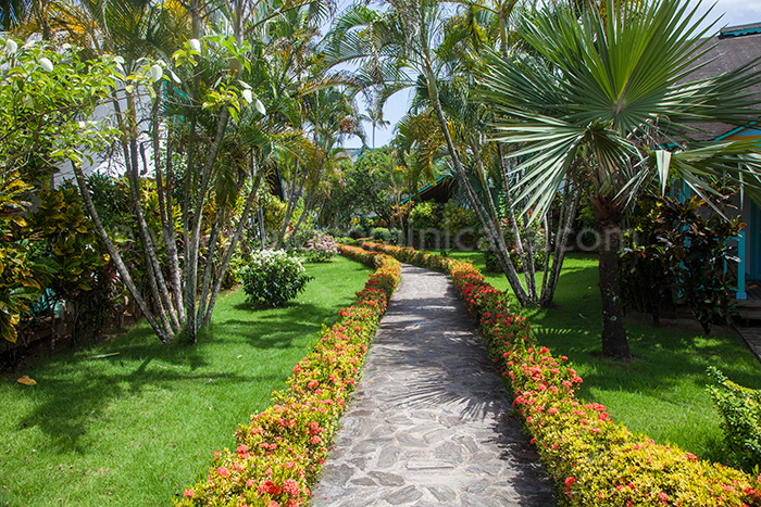 garden las palmas location bungalow las terrenas 02